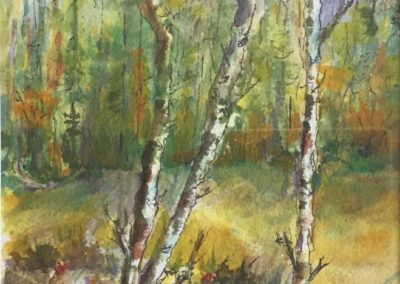 Painting by Ann Young Sonoma Artist